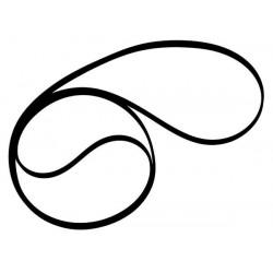 Correa (belt) para varios tocadiscos Pioneer